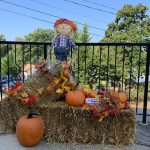 Fall Display 2019 Cherokee Scout